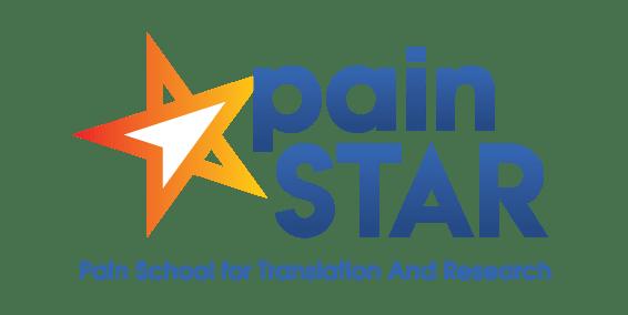 painSTAR logo