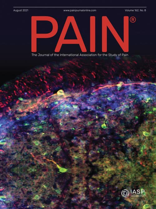 Pain 162 Cover