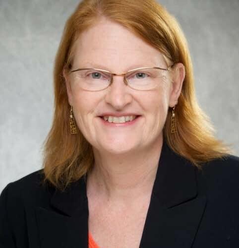Kathleen A. Sluka, PT, PhD, FAPTA